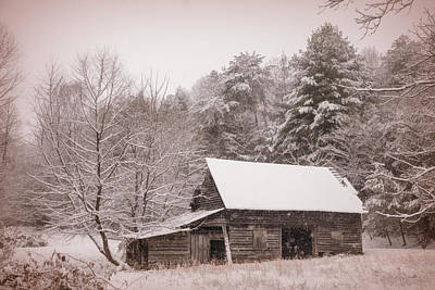 Photograph - Soft Colors In The Snow In Sepia Tones by Debra and Dave Vanderlaan