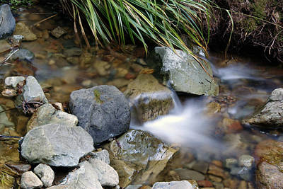 Photograph - Soft Creek On Tam #1 by Ben Upham III