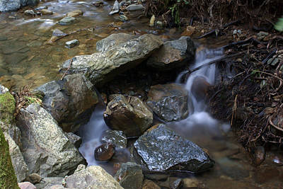 Photograph - Soft Creek On Tam #3 by Ben Upham III