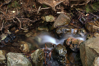Photograph - Soft Creek On Tam #4 by Ben Upham III