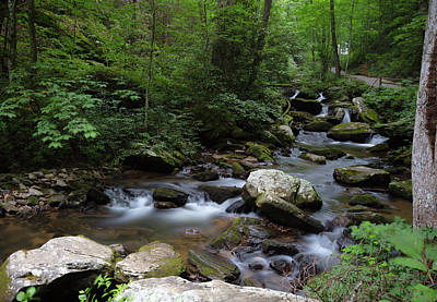 Photograph - Soft Georgia Stream by Sean Allen