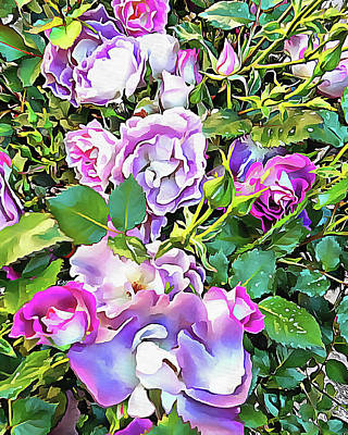 Photograph - Soft Lilac Rose by Dorothy Berry-Lound