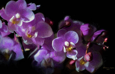 Phalaenopsis Photograph - Soft Pastel by Marvin Spates