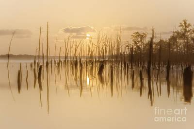 Photograph - Soft Peach Sunrise At Manasquan by Debra Fedchin