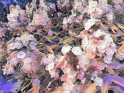 Soft Phlox Art Print by Nancy Pauling