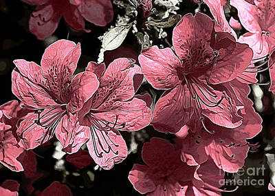 Photograph - Soft Pink Azaleas by Erica Hanel