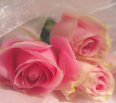 Photograph - Soft Pink Roses 4 by Tara Shalton