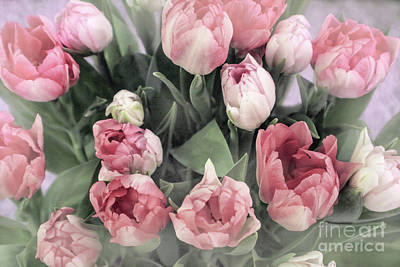 Photograph - Soft Pink Tulips by Sandy Moulder