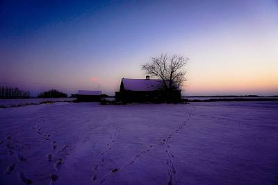 Photograph - Soft Praire Dusk - Wilkes Farm by Desmond Raymond