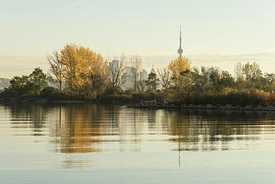 Photograph - Soft Silky Ripples - Toronto Skyline Through The Trees by Georgia Mizuleva