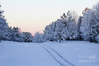 Photograph - Soft Snow Covered Morning by Sandra Clark