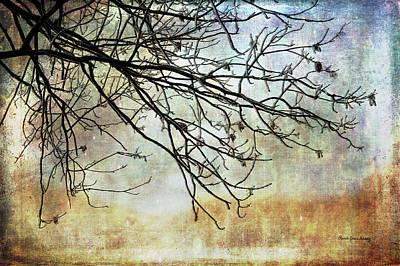 Photograph - Soft Start Of The Day by Randi Grace Nilsberg