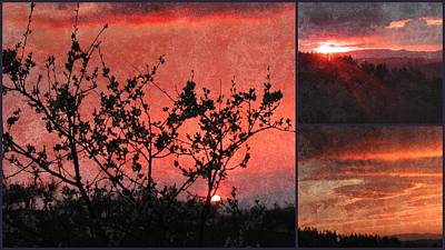 Photograph - Soft Sunset Collage 3 by Dorothy Berry-Lound