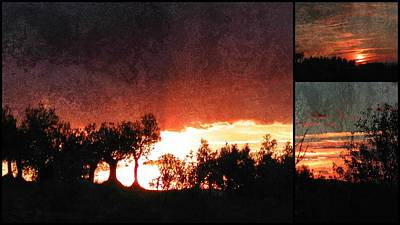 Photograph - Soft Sunset Collage 4 by Dorothy Berry-Lound