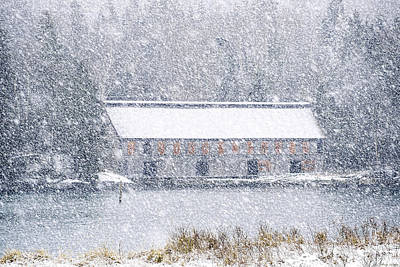 Photograph - Soft Whiteout At The Old Smokehouse by Marty Saccone