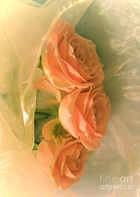 Photograph - Soft Peach Roses by Tara Shalton