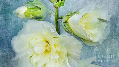 Art Print featuring the photograph Softly by Betty LaRue