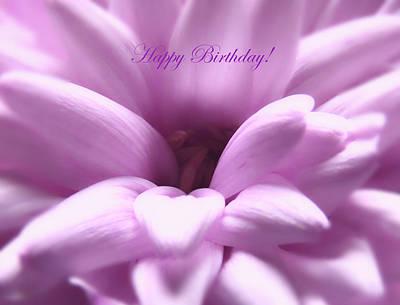 Photograph - Softness Birthday Card by Johanna Hurmerinta