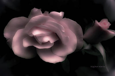 Softness In Pink Art Print by DigiArt Diaries by Vicky B Fuller
