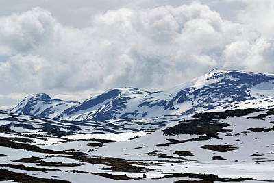 Photograph - Sognefjell Mountain by Terence Davis