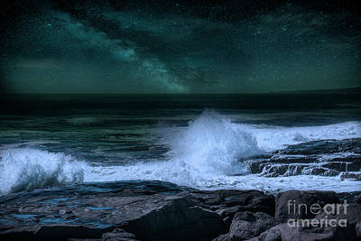 Photograph - Sohier Park, York, Maine by Mim White