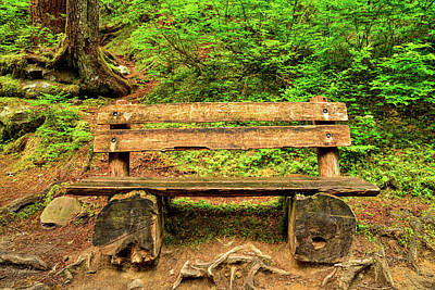 Photograph - Sol Duc Bench by Spencer McDonald