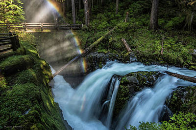 Photograph - Sol Duc Enchantment by Expressive Landscapes Fine Art Photography by Thom