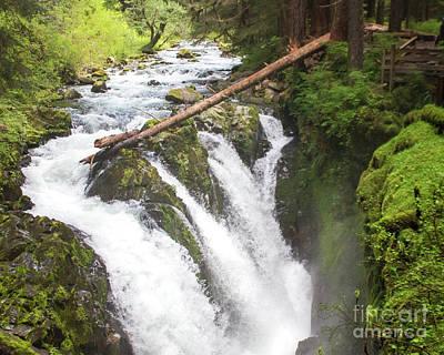 Photograph - Sol Duc Falls-2 by Cheryl Del Toro