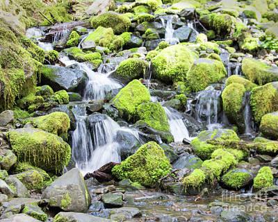 Photograph - Sol Duc Falls-3 by Cheryl Del Toro