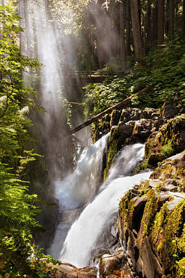 Forest Photograph - Sol Duc Falls by Adam Romanowicz