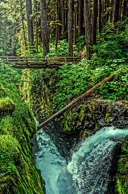 Photograph - Sol Duc Falls by Dan Sproul