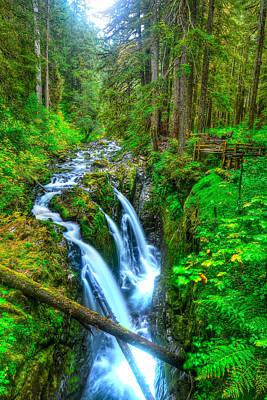 Photograph - Sol Duc Falls by Don Mercer
