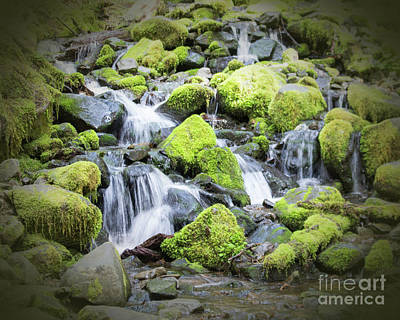 Photograph - Sol Duc Falls Vignette by Cheryl Del Toro