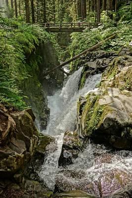 Photograph - Sol Duc Falls Washington by Dan Sproul