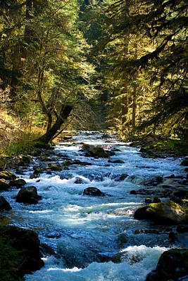 Photograph - Sol Duc River Above The Falls - Washington by Marie Jamieson