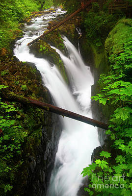 Scenic River Photograph - Sol Duc Rush by Mike Dawson