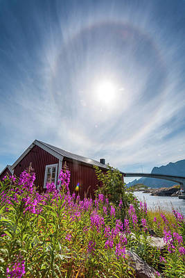 Photograph - Solar Halo Above Rorbu by Alex Conu