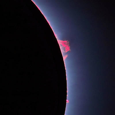 Solar Eclipse Photograph - Solar Prominence by Tom Bartol