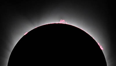 Photograph - Solar Prominences  by Alan Vance Ley