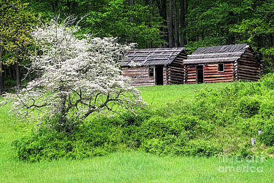 Log Cabins Photograph - Soldier Huts  by George Oze