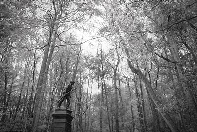 Photograph - Soldier In The Quiet Woods by Alice Gipson