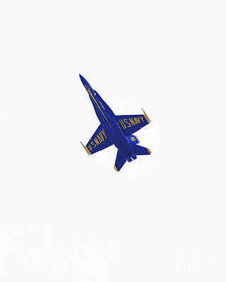 Photograph - Solitary Blue Angel by Scott Cameron