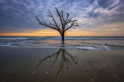 Photograph - Solitary - Botany Bay, Sc by Rick Berk