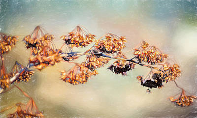 Shed Digital Art - Solitary Branch by Black Brook Photography