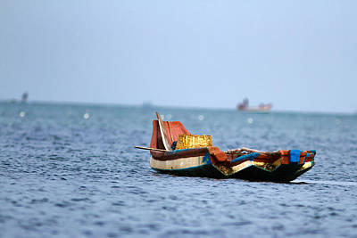 Photograph - Solitary  by Ramabhadran Thirupattur