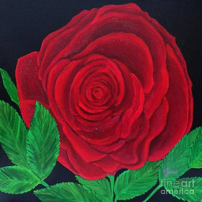 Painting - Solitary Red Rose by Karen Jane Jones