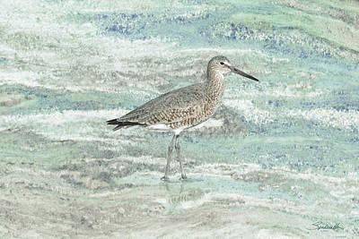 Sandpiper Digital Art - Solitary Shorebird by Spadecaller