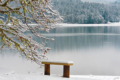 Photograph - Solitary Snowscape by Dee Browning