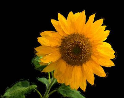 Digital Art - Solitary Sunflower by Richard Farrington