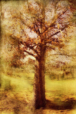 Photograph - Solitary Tree Fx by Dan Carmichael